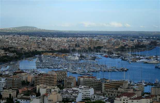 Baie de Majorque