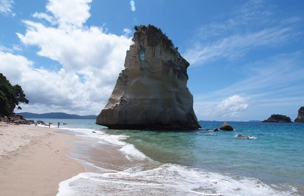 Cathedral Cove Macadamias