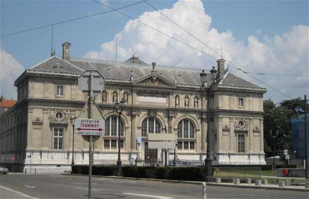 Museo biblioteca