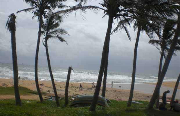 Playa de Moratuwa