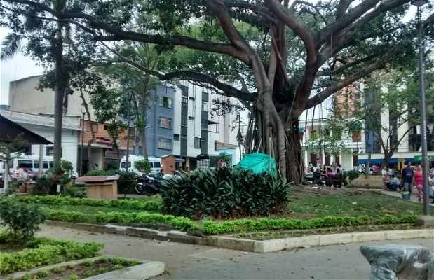 Parque Antonia Santos