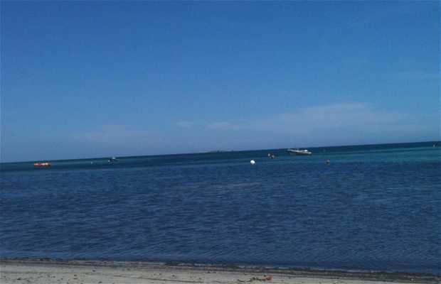 Playa de Piantarella