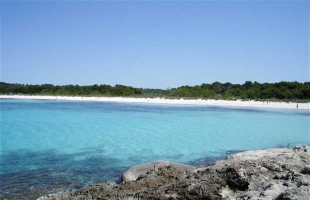 Playa de Son Saura y Cala Es Talaier