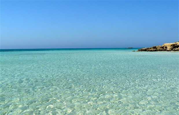 Spiaggia di elafonissi a elafonisi 19 opinioni e 70 foto for Disegni da camera da spiaggia