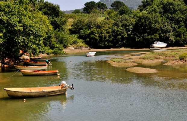 Urdaibai biosphere reserve