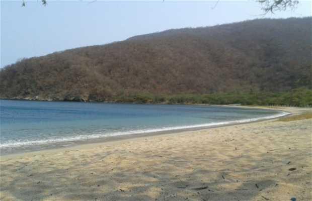 Baía Concha