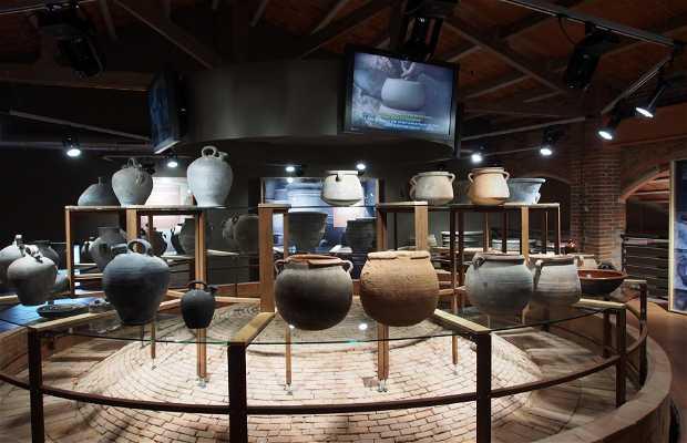 Museo de la Terrisa