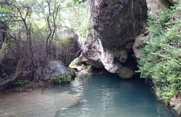 Palancia River
