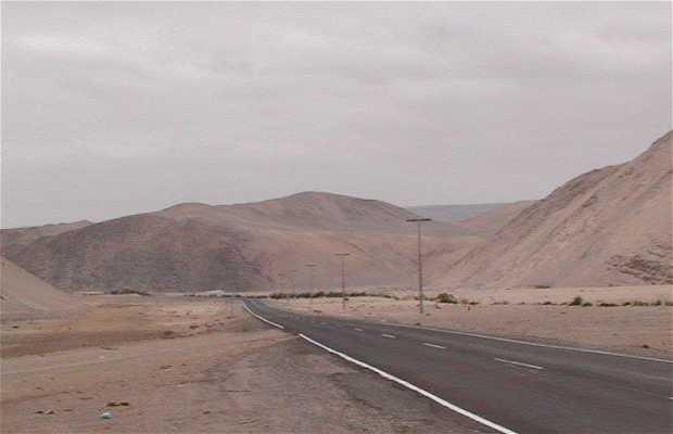 Auto Stop pour Chile