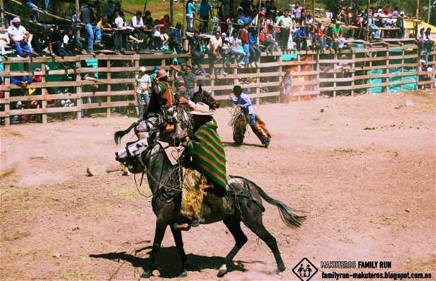 Rodeos de las Fiestas de San Juanillo