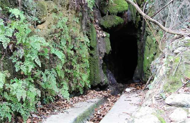 Ruta La Font de Lloret