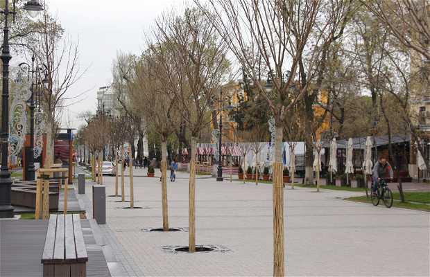 Street Panfilov