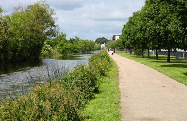 Royal Canal Avenue