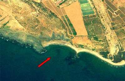 Playa Del Ballenato