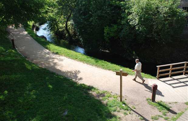 Parque del río Gafos