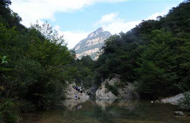 Valle de Sant Aniol