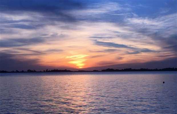 Laguna di Chascomus