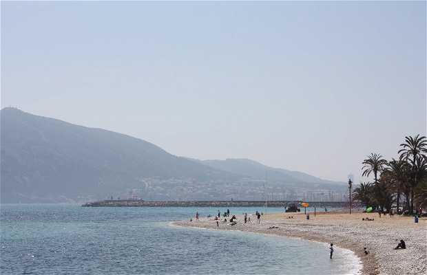 Playa de la Roda