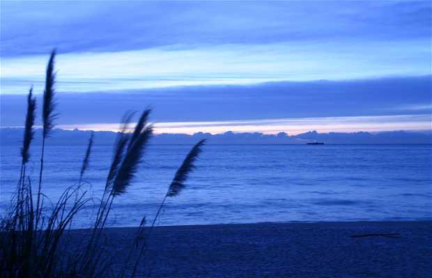 Playa de Arenys de Mar