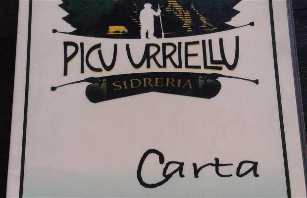 Picu Urrielu