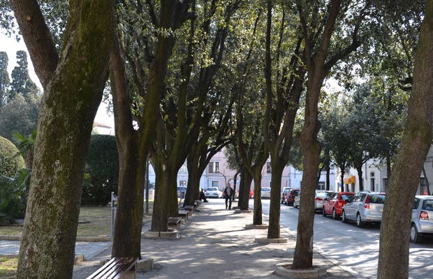 Plaza Brolo