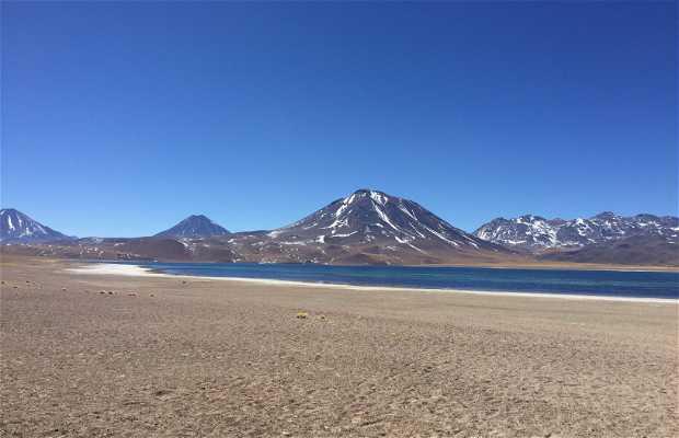Volcán Miñiques
