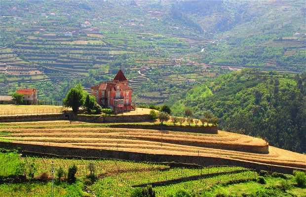 The Upper Duero (Portuguese Wine Zone)