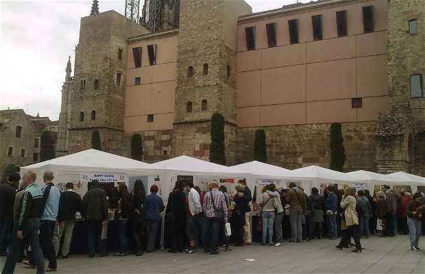 Dia del Libro en Barcelona