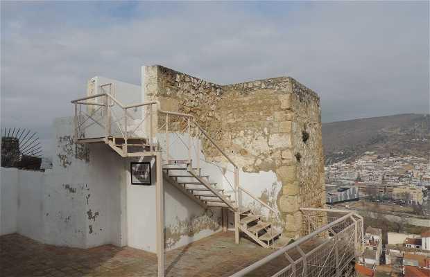 Mirador Arqueológico de la Alcazaba