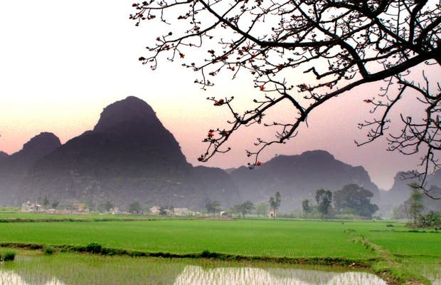 Paddy field Kenh Ga