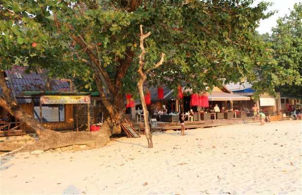 15 Palms Beach Bar & Restaurant