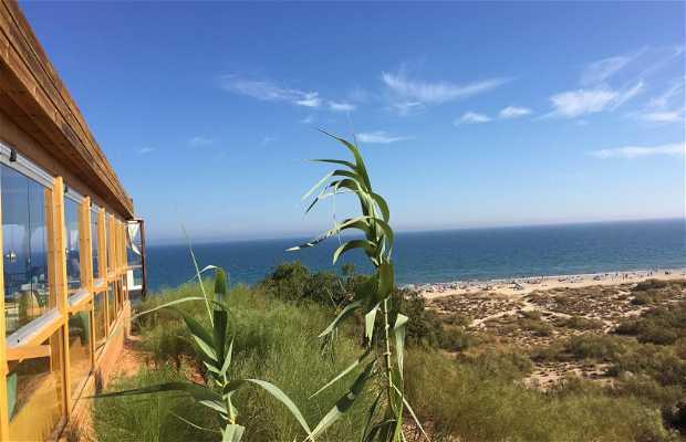 Guarita Terrace