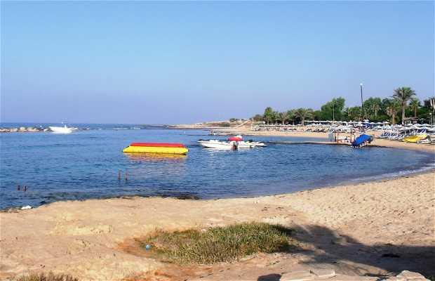 Playa Kermia