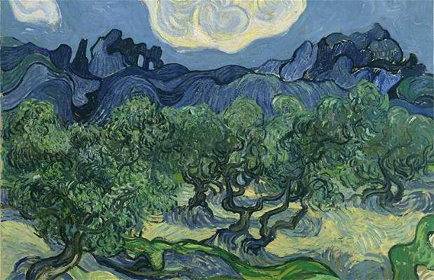 Saint-Rémy-de-Provence and Van Gogh