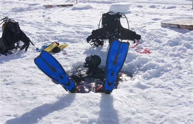 Ecole de plongée sous glace