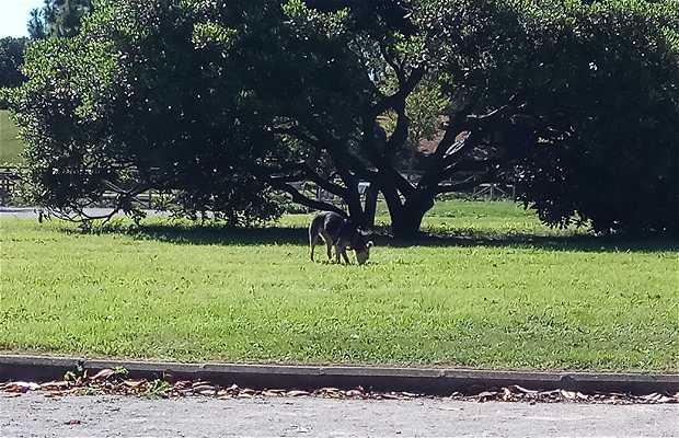 Parque de Moreda