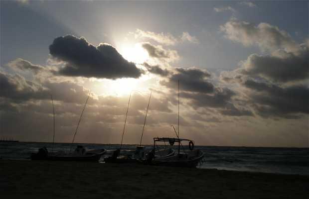 Praia Mamitas
