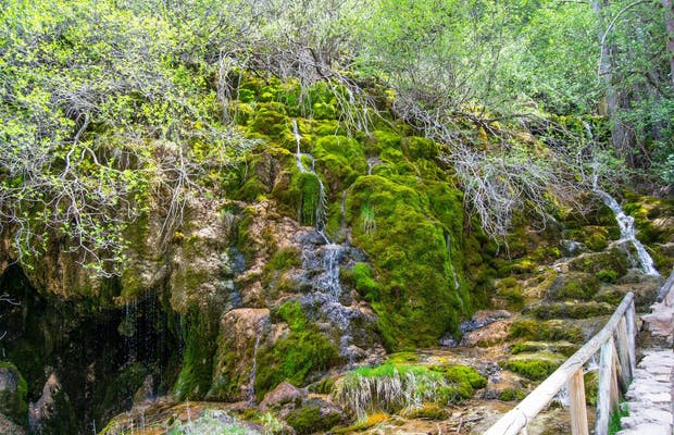 Source du Rio Cuervo