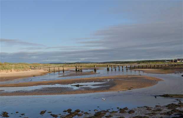 Playa de Lossiemouth