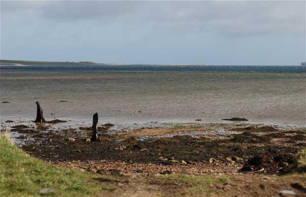 Península de Deerness