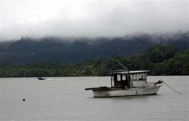 Puerto de Livingston