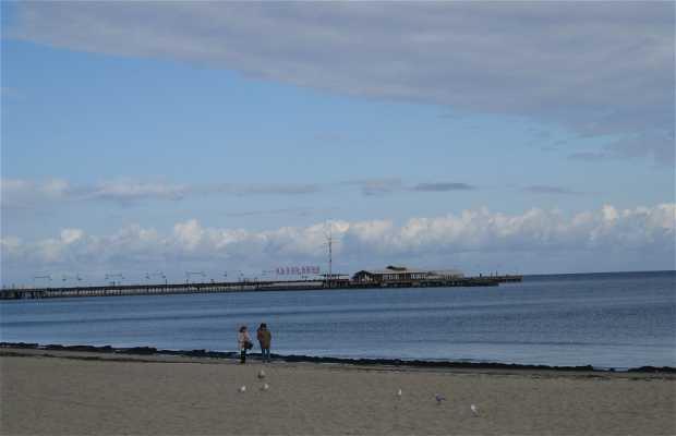 Playa de Sopot
