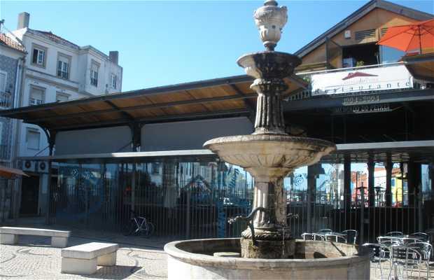 Plaza del Pescado