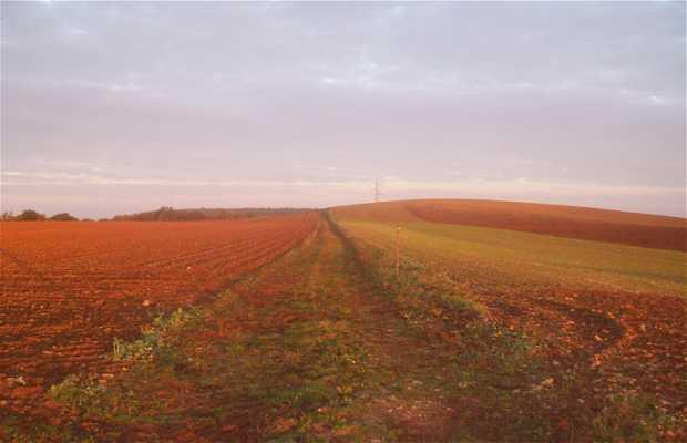 Vía Alésia Sombernon