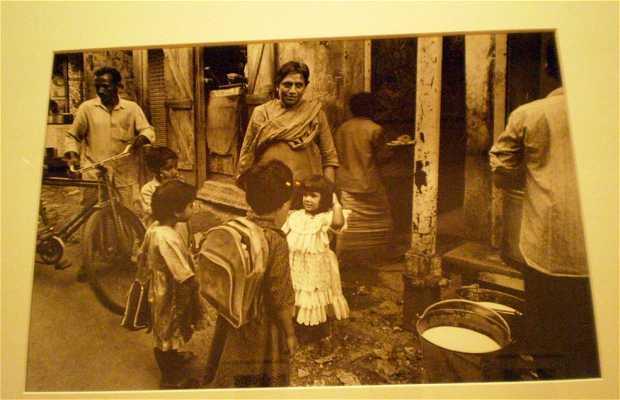 Exposición de Dayanita Singh