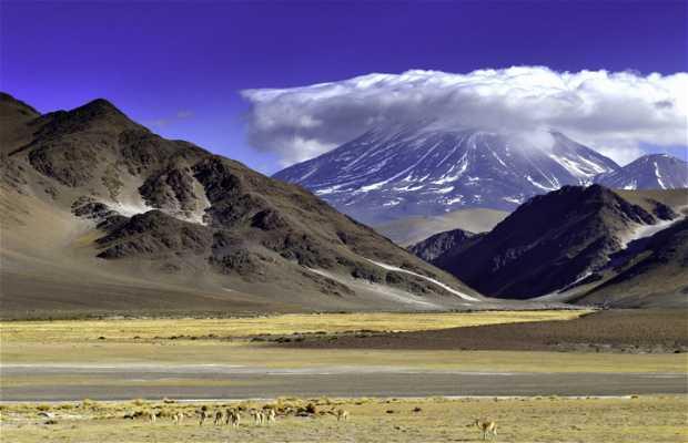 """""""Volcán Incahuasi"""""""