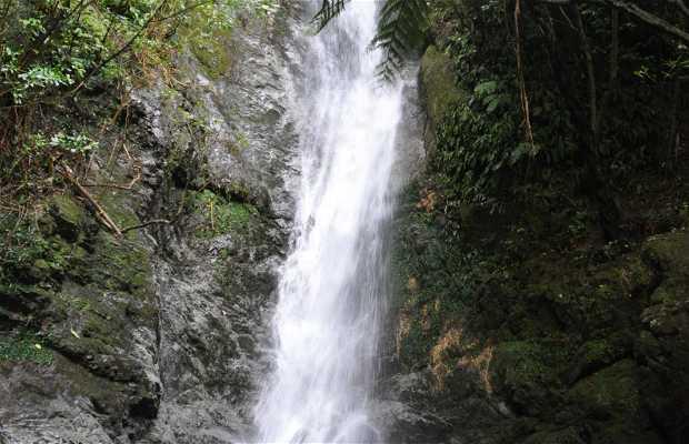 Ohau Stream