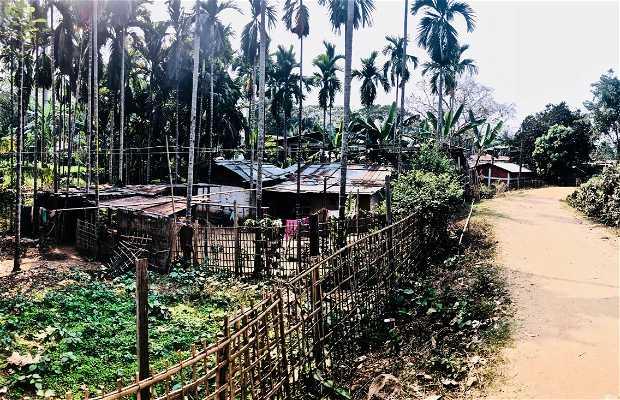 Jamuguri