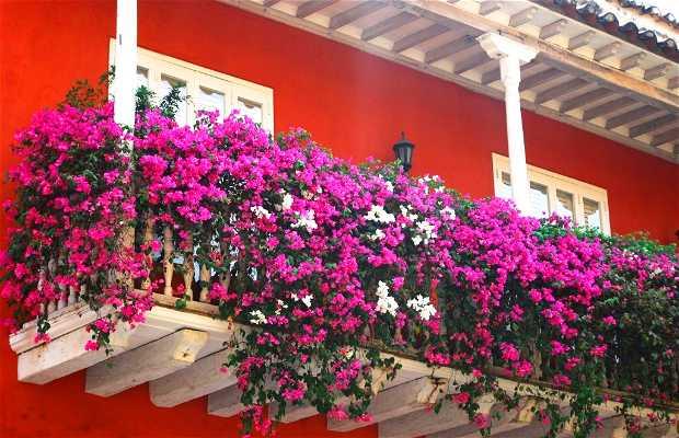 Balcons fleuris de Cartagena à Cartagena: 1 expériences et 7 photos