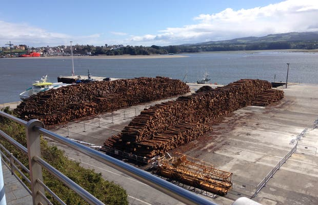 Cargadero de madera